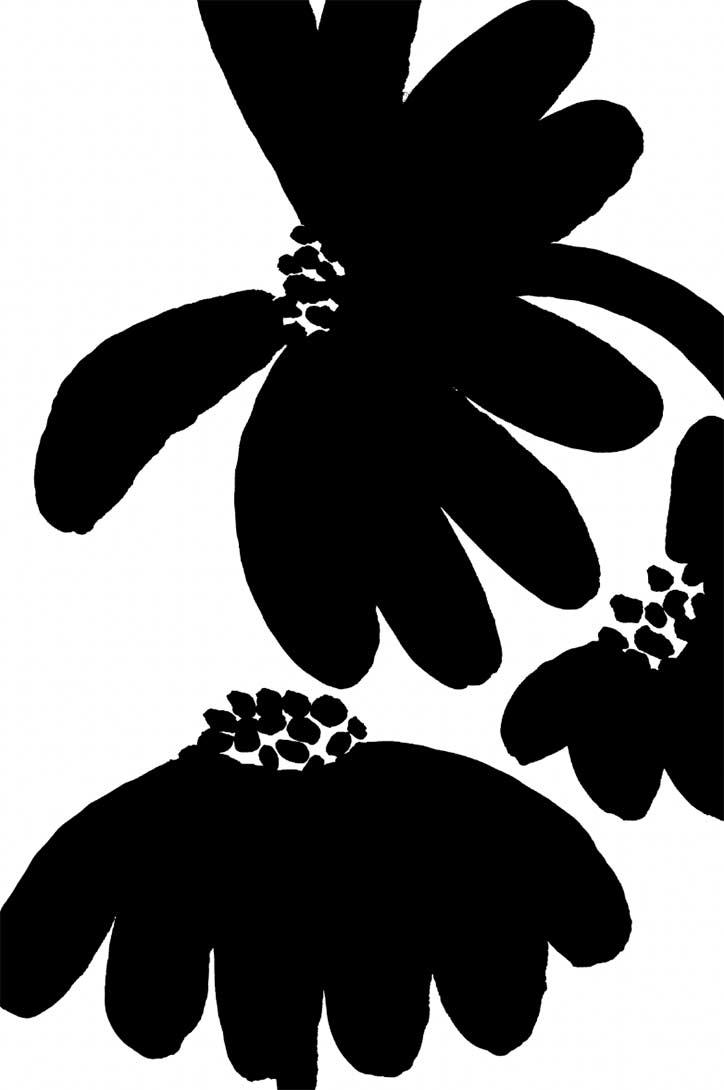 Mirette Affiches pour bébé sur le thème des fleurs développement de la vision de bébé à partir de 3 mois noir fleurs contraste noir et blanc