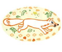 Pomme d'api jeux traces d'animaux Magali Bardos renard oiseau automne champignon illustration pour enfants bayard presse