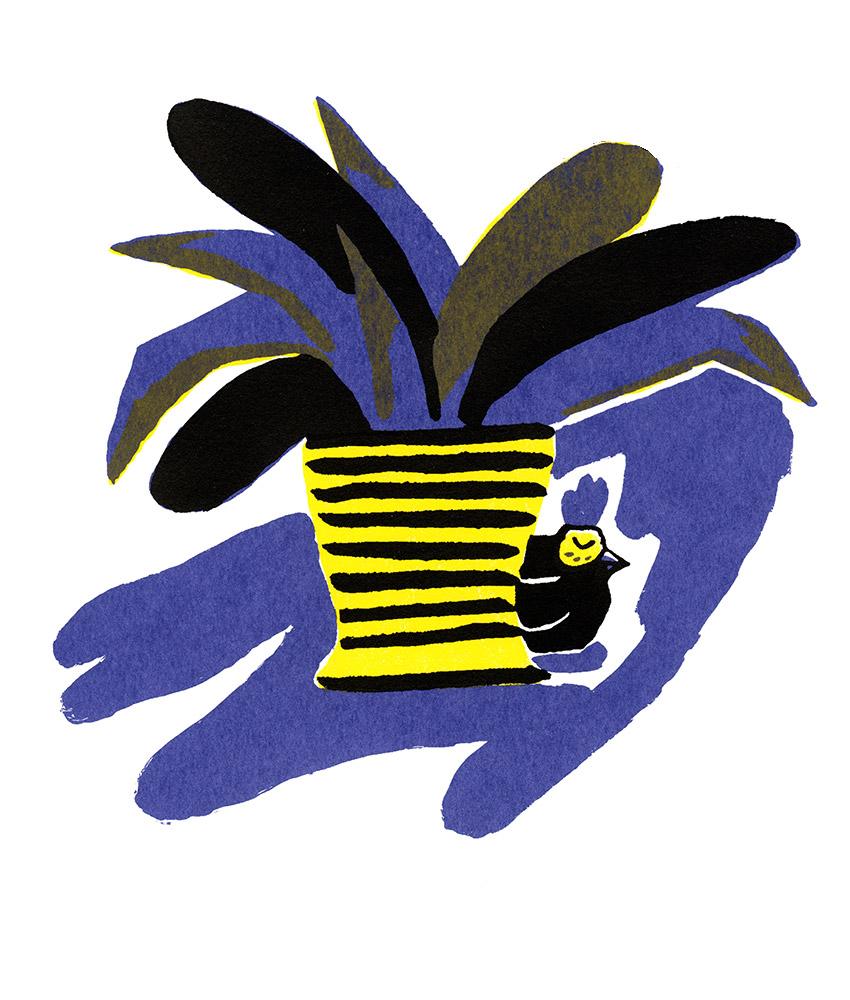 Mon amie Poulette © Magali Bardos illustration silkscreen printing poster violet yellow black chicken shadow nap time plants garden
